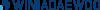WINIADAEWOO Electronics Logo